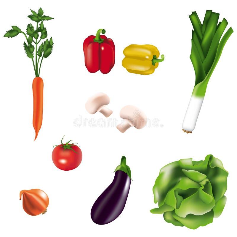Vegetais isolados ilustração do vetor