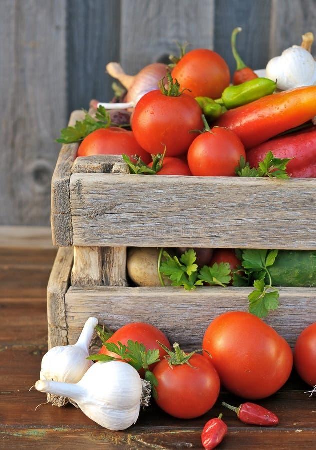 Vegetais na caixa fotos de stock royalty free