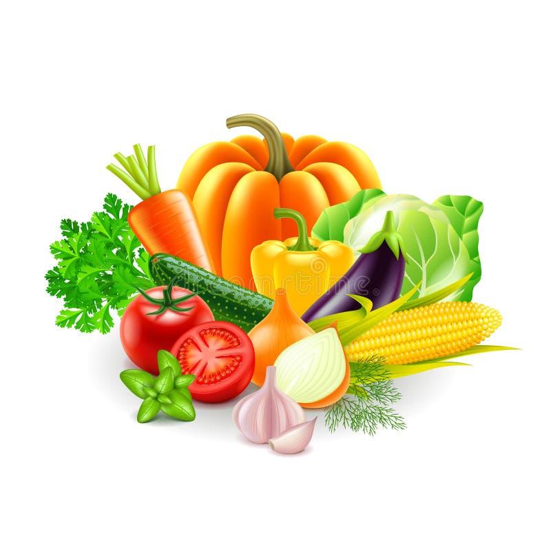 Vegetais no vetor branco do fundo ilustração stock