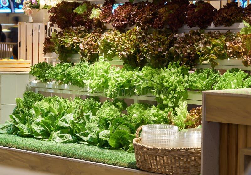 Vegetais orgânicos frescos para a venda imagens de stock royalty free