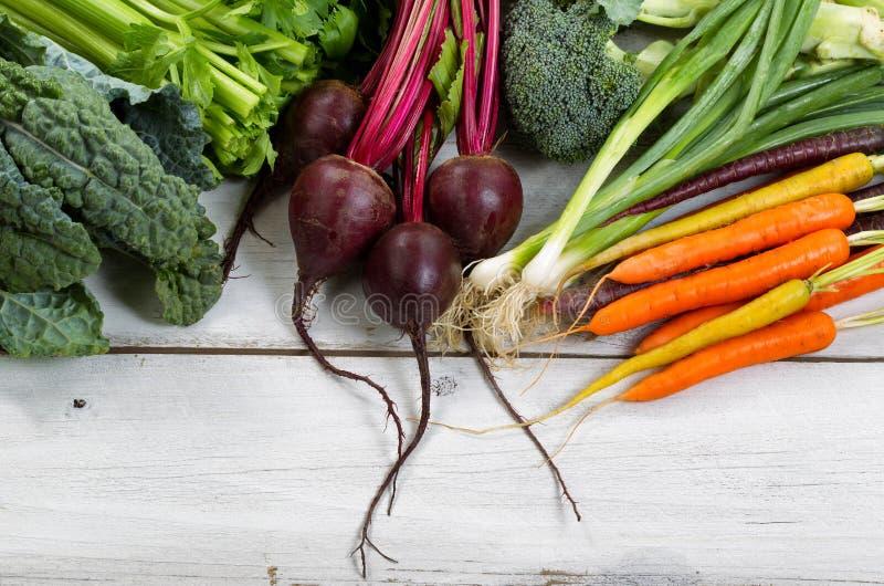 Vegetais recentemente escolhidos em placas de madeira rústicas foto de stock royalty free