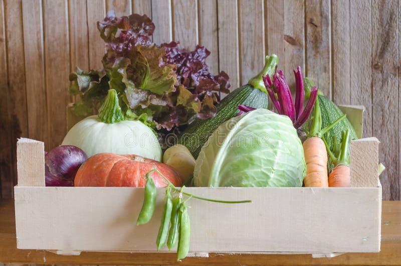 Vegetais sazonais do outono thanksgiving colheita nova, colheita fresca na cesta, caixa no fundo de madeira imagem de stock