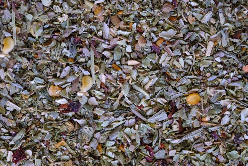 Vegetais secados e ervas da mistura verde da especiaria As especiarias para pratos italianos consistem na manjericão, orégano, al imagem de stock
