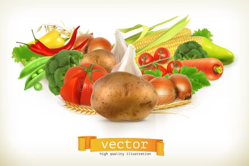 Vegetais suculentos e maduros da colheita ilustração do vetor