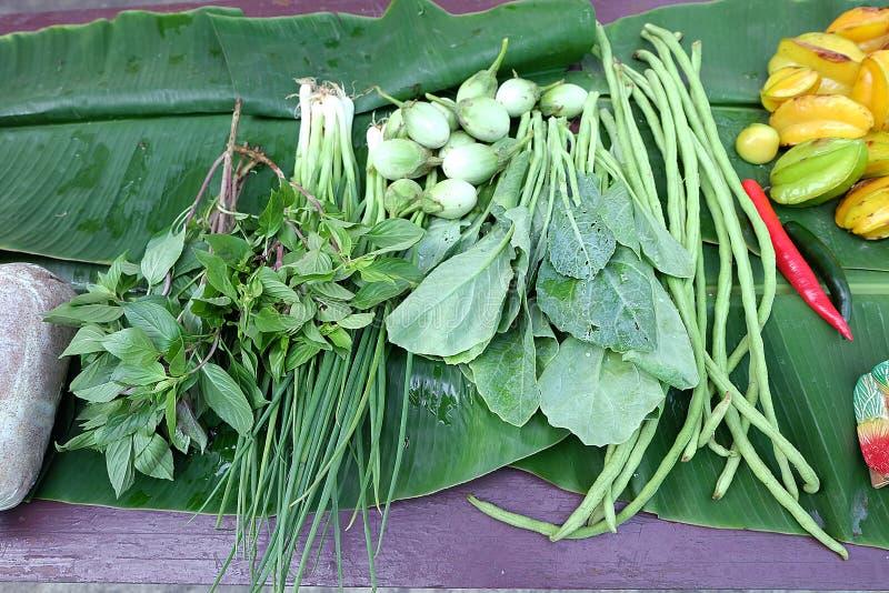 Vegetais verdes Close up do colhido recentemente fotografia de stock royalty free