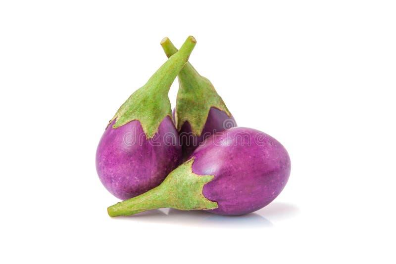 Vegetal cru orgânico da beringela, o saudável e o delicioso da beringela fotografia de stock royalty free