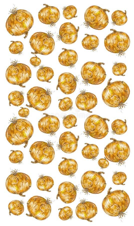 Vegetal da cebola da pintura da aquarela fotografia de stock royalty free