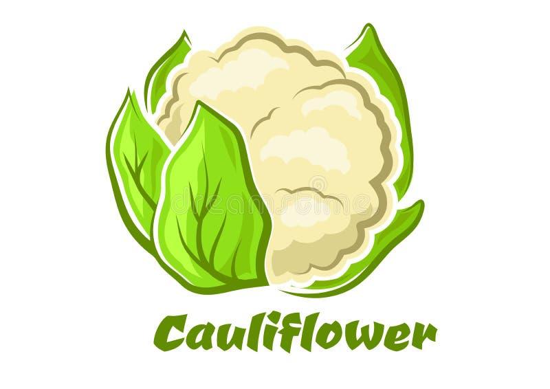 Vegetal da couve-flor dos desenhos animados com folhas verdes ilustração do vetor