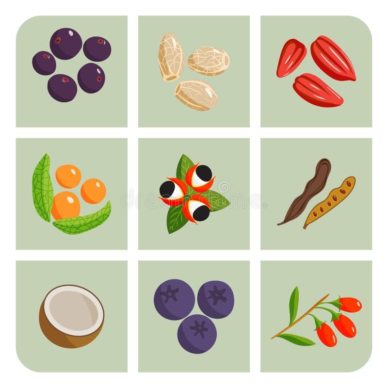 Vegetal do alimento do vegetariano e pratos saudáveis do restaurante dos frutos ilustração stock