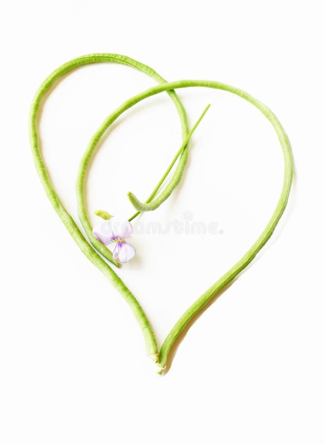 Vegetal do amor fotos de stock royalty free