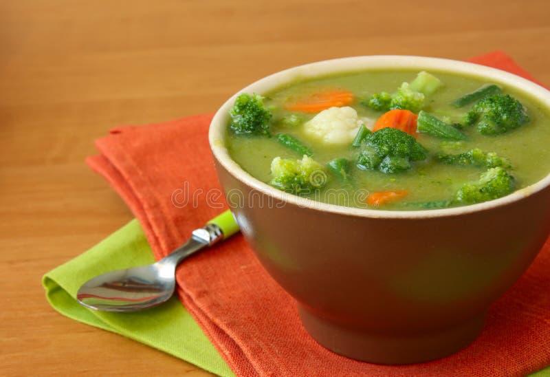vegetarian овоща супа стоковое фото