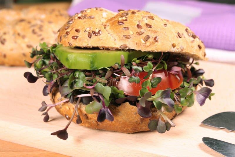 Vegetarian burger with fresh microgreens royalty free stock photos