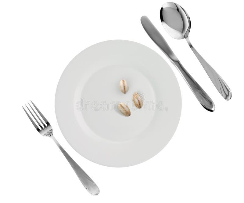 Vegetarian dish - porridge