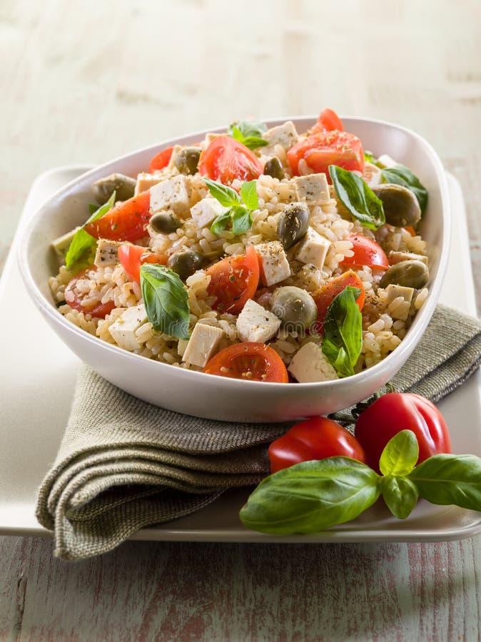 vegetarian för ricesalladtofu royaltyfri foto