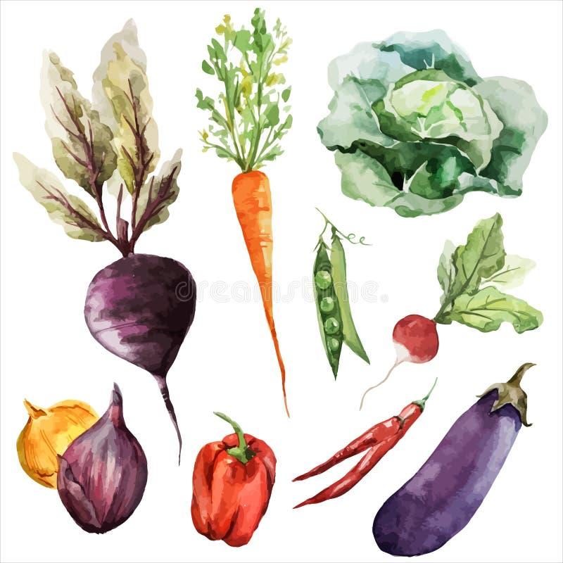 Vegetarian för strikt vegetarian för rotfrukter för bakgrundstapettextur royaltyfri illustrationer