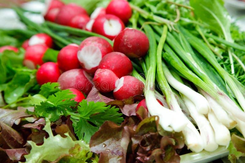 Vegetarian Food royalty free stock photos