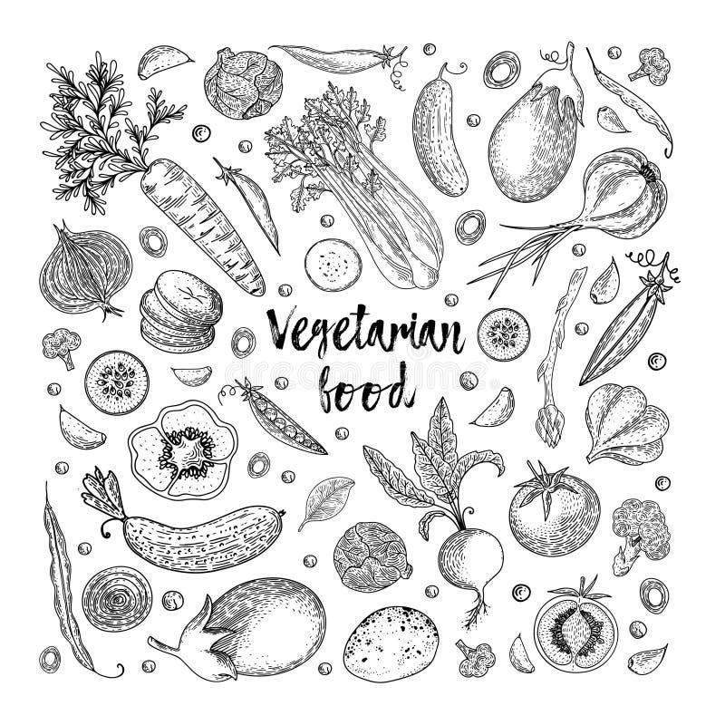 Vegetarian food. Vegetable hand drawn vintage vector illustration. Farm market poster. Healthy life. Vector composition. Of fresh vegetables. Detailed food royalty free illustration
