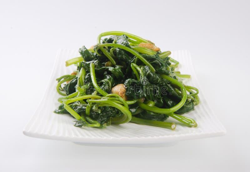 Download Vegetarian. Healthy Diet Vegetarian Stock Photo - Image: 24621688
