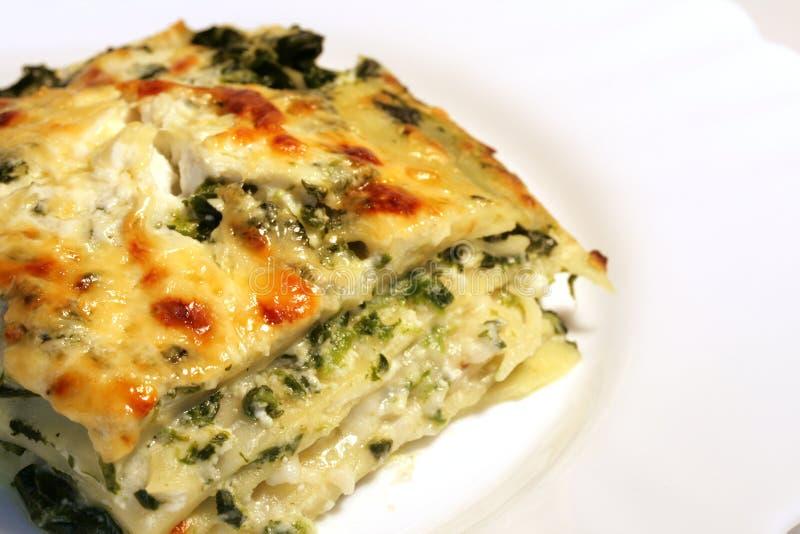 Vegetarian lasagne with ricott royalty free stock photos