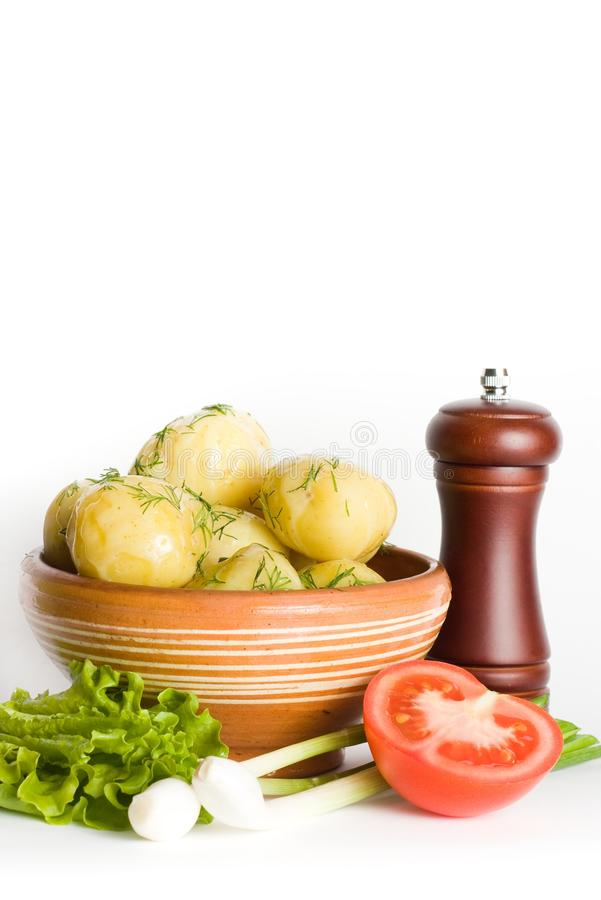 Free Vegetarian Meal Stock Photo - 10071010