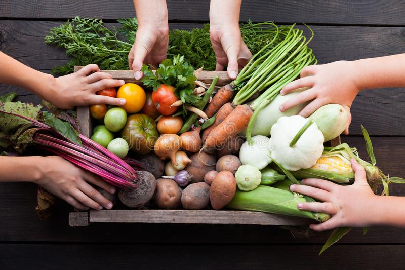 Vegetarian organic food. Assorted fresh vitamin vegetables royalty free stock images