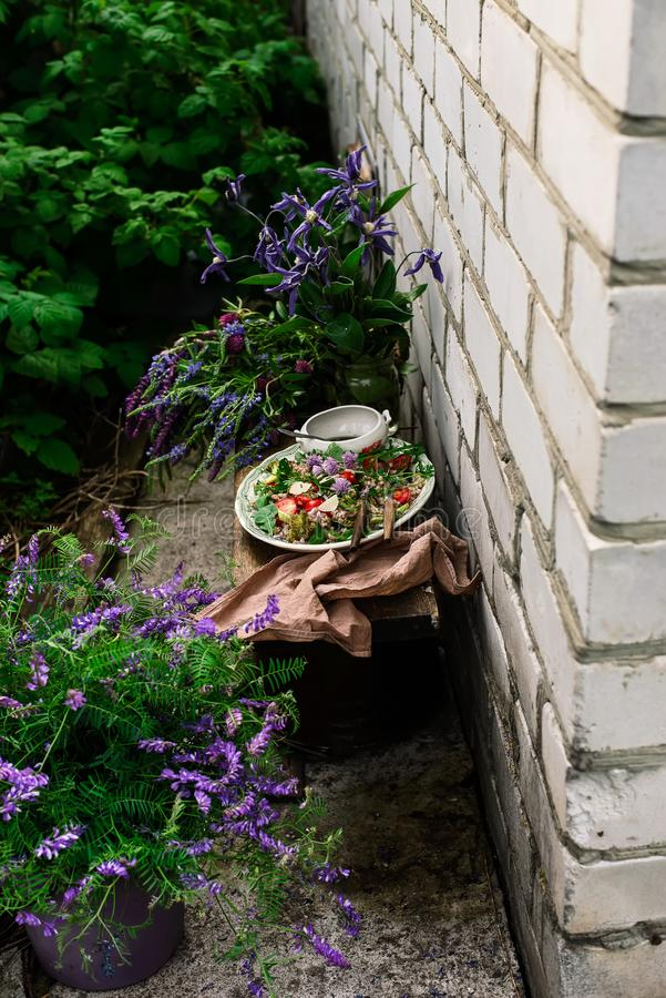 Vegetarian salad of green buckwheat royalty free stock image