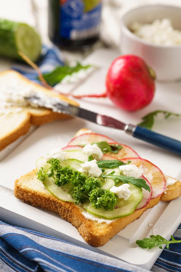 Vegetarian sandwich with cucumber, radish and ricotta royalty free stock images
