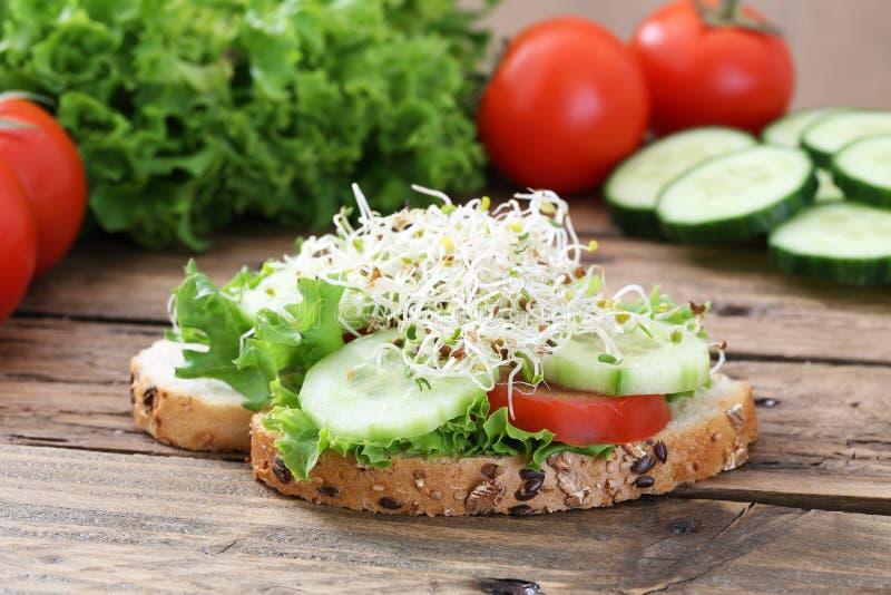 Vegetarian sandwich royalty free stock photo