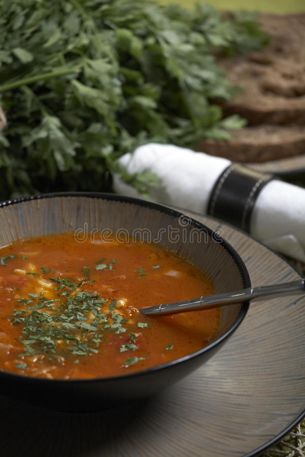 Free Vegetarian Soup Royalty Free Stock Images - 17264799