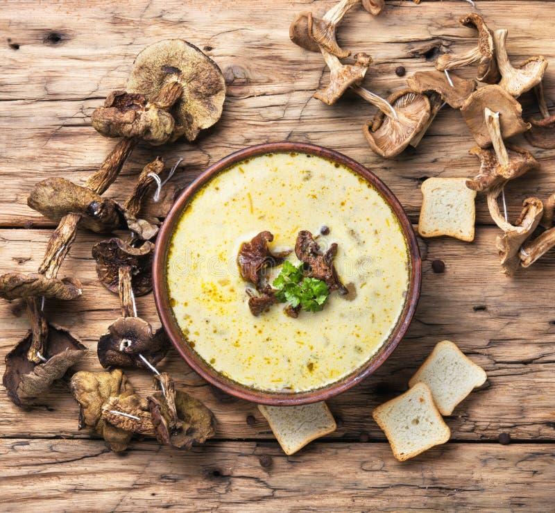 Download Rustic mushroom soup stock image. Image of spoon, dietetic - 104646475