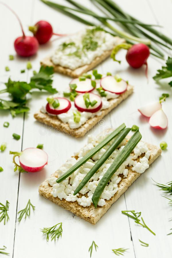 Vegetarian toast with cottage cheese, herbs and radish on a white background. Selective focus, vertical photo stock images