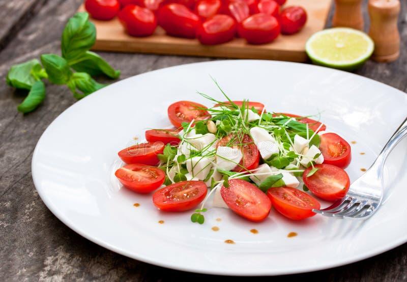 Vegetarian tomato salad with Mozzarella royalty free stock images