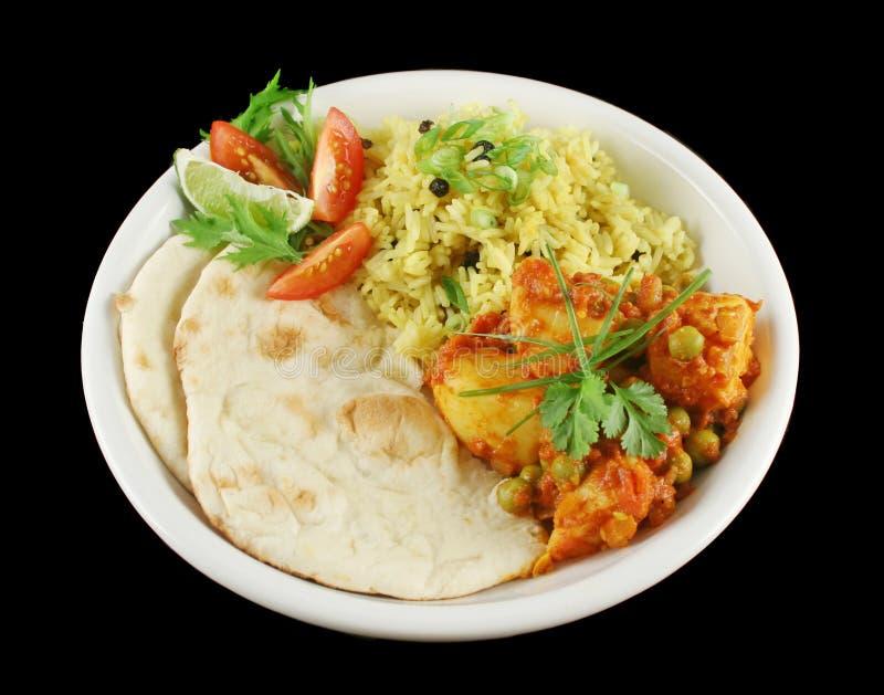 Vegetariano indiano 1 foto de stock royalty free