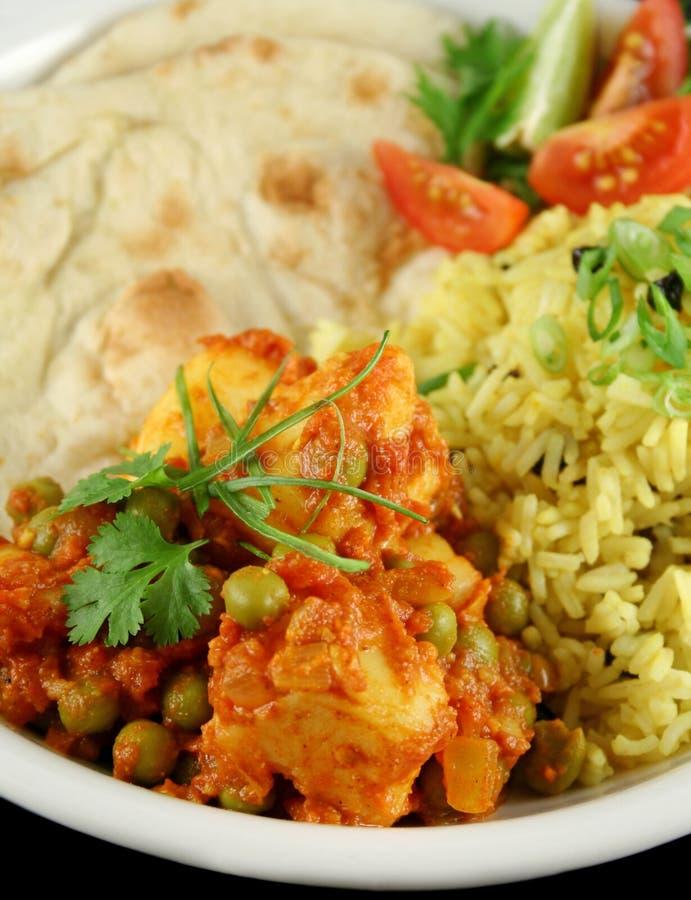 Vegetariano indiano 2 imagem de stock