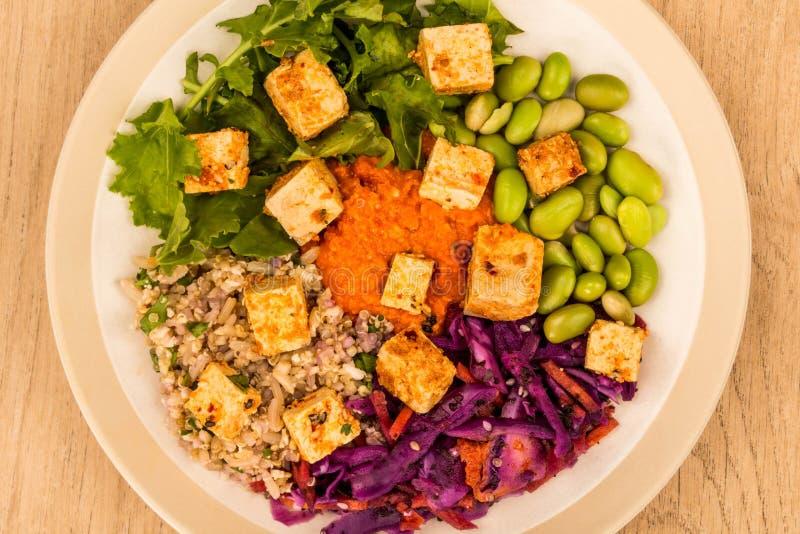 Vegetariano picante do estilo asiático ou salada do Tofu do vegetariano fotos de stock