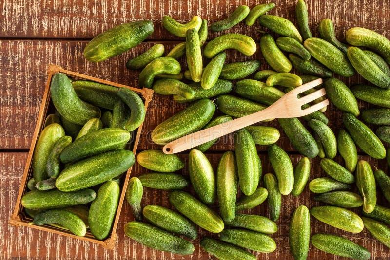 Vegetarisch voedsel Komkommer op de scherpe raad, saladeingredi?nt, verse komkommers op een lijst wordt gesneden die Komkommeroog stock afbeeldingen