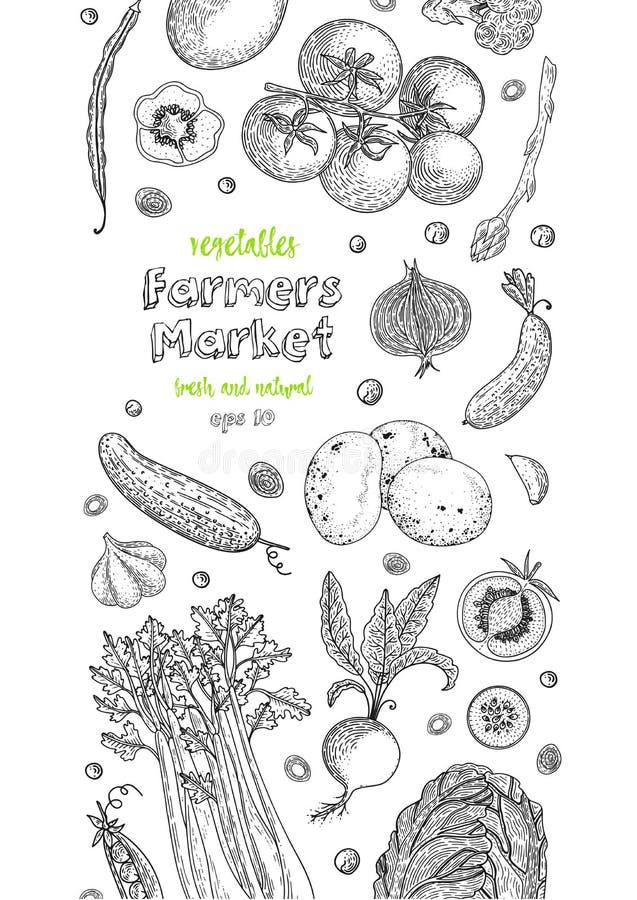 Vegetarisch voedsel Plantaardige hand getrokken uitstekende vectorillustratie De affiche van de landbouwbedrijfmarkt Het gezonde  vector illustratie