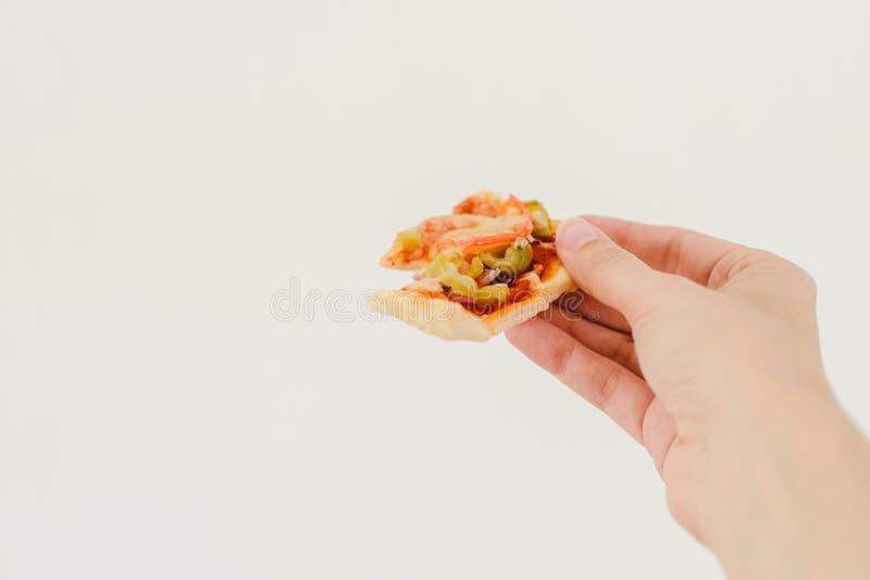 Vegetarische rechteckige Pizza lizenzfreies stockbild