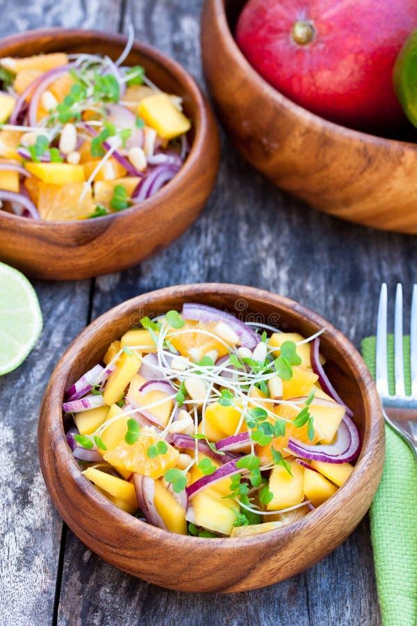 Download Vegetarische Salade Met Mangosinaasappelen En Rode Ui Op Houten Stock Foto - Afbeelding bestaande uit calorieën, laag: 54088406