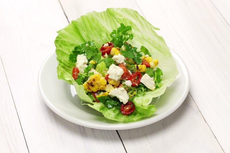 Vegetarische slaomslagen stock foto's