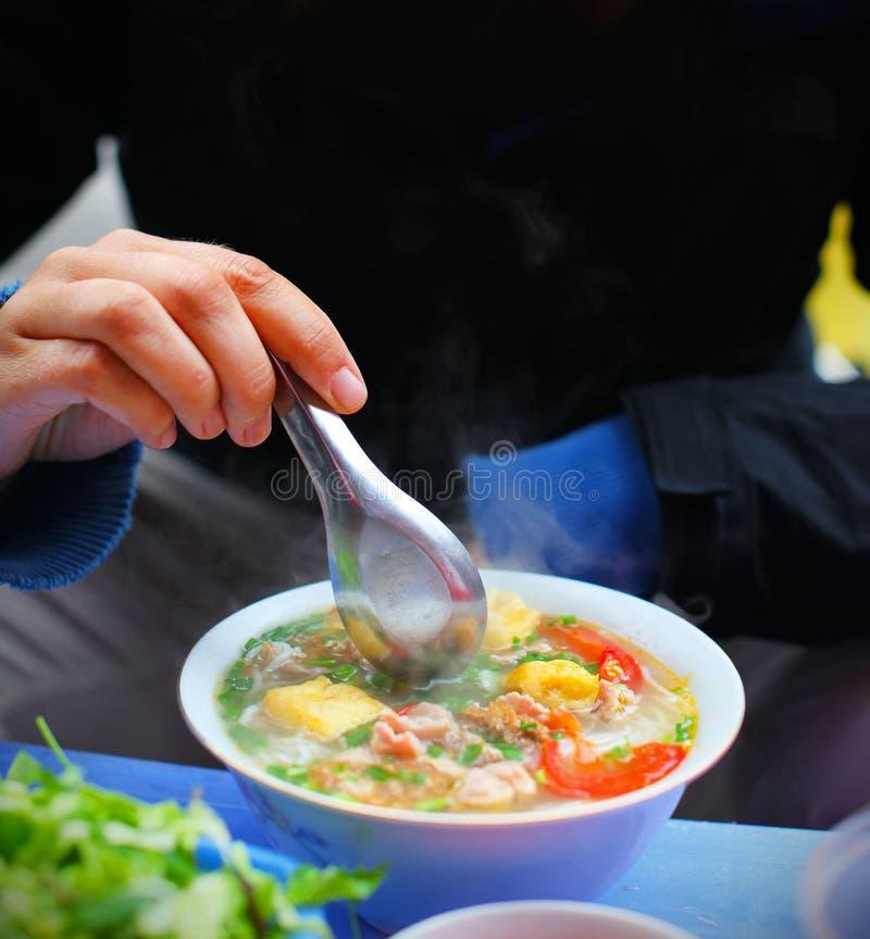Vegetarische Suppe mit Tofu und Gemüse lizenzfreie stockfotos
