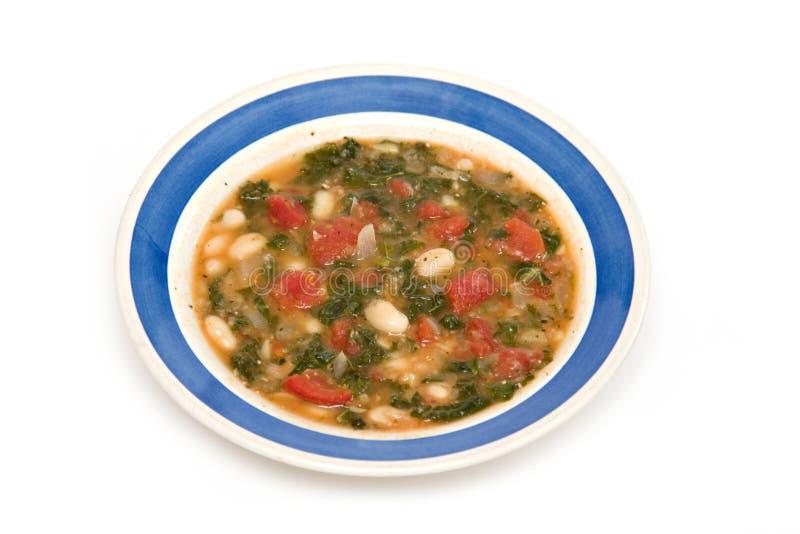 Vegetarische Wirsingkohl-Bohnensuppe lizenzfreies stockfoto