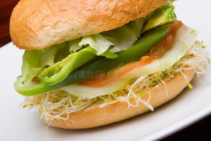 Vegetarisches Brötchen lizenzfreies stockfoto