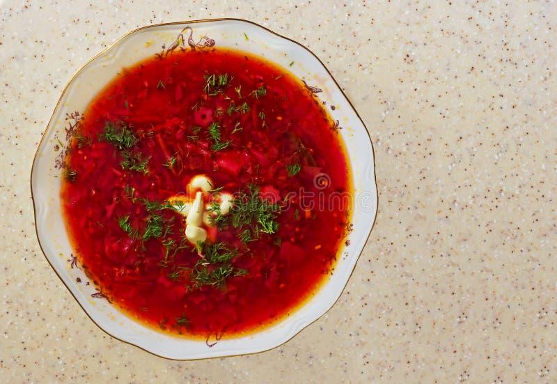 Vegetarisk betasoppa med gräsplaner och gräddfil Röd vegetarisk rödbetasoppa royaltyfri fotografi