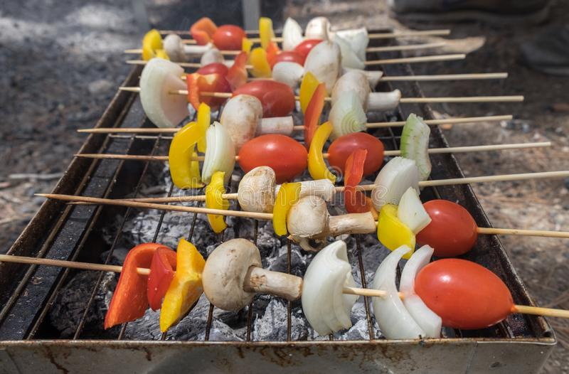 Vegetarisk kebabgrillfest på ett galler arkivfoton