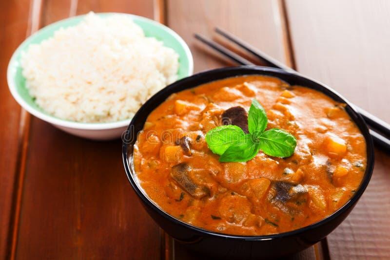 Vegetarisk thai curry royaltyfri bild