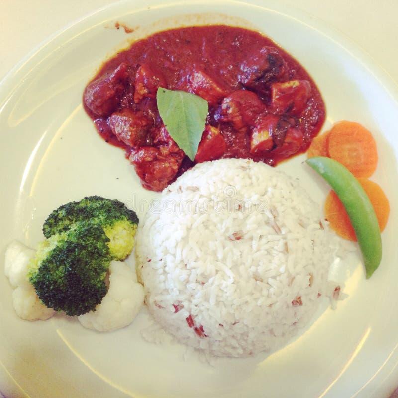 Vegetariskt kött med röd sås arkivbild