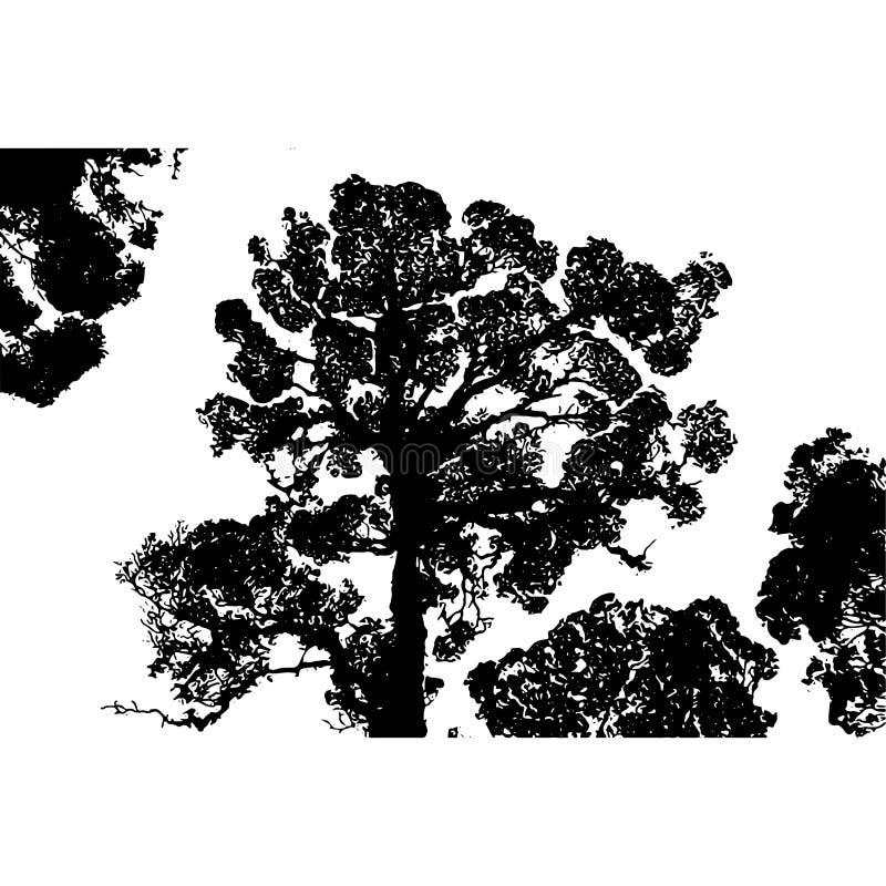 vegetatie stock illustratie