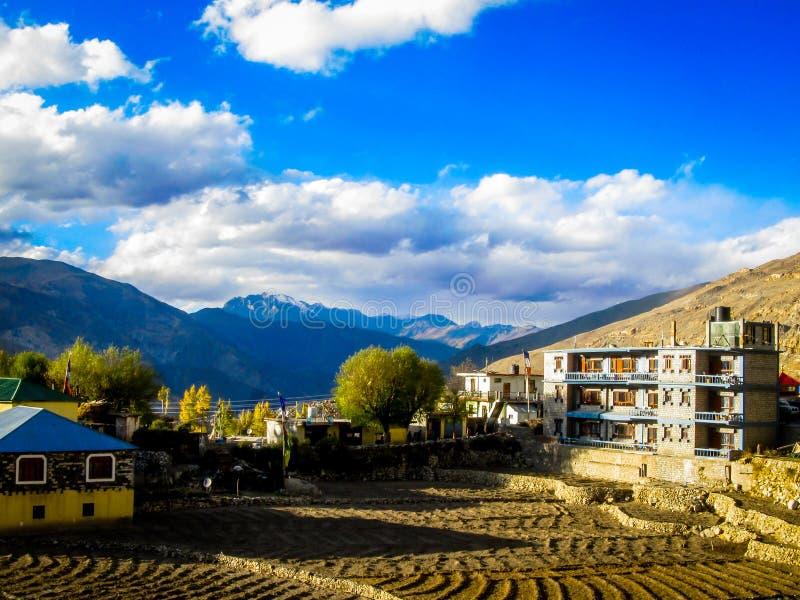 Vegetatie bij hoge heuvels van Himalayagebergte royalty-vrije stock afbeeldingen