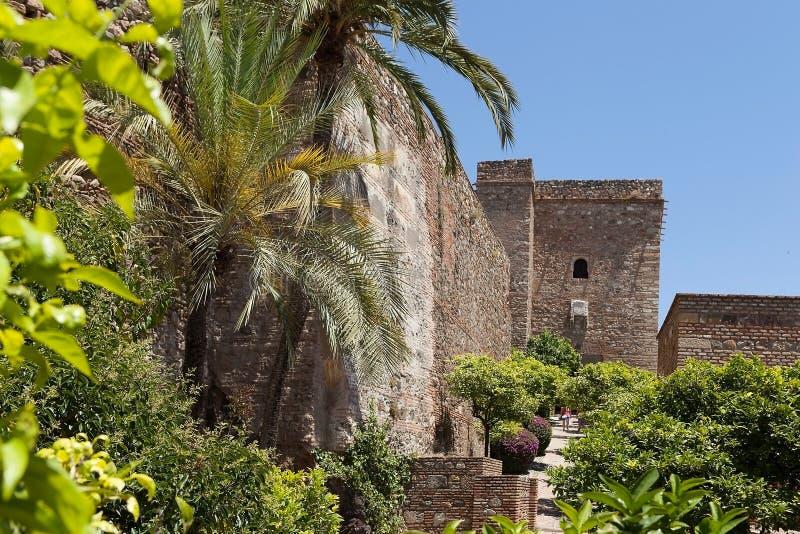 Download Vegetatie Dichtbij Zamka.Granada. Stock Afbeelding - Afbeelding bestaande uit muur, europa: 39103571
